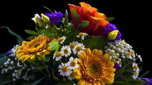 bouquet-2498385
